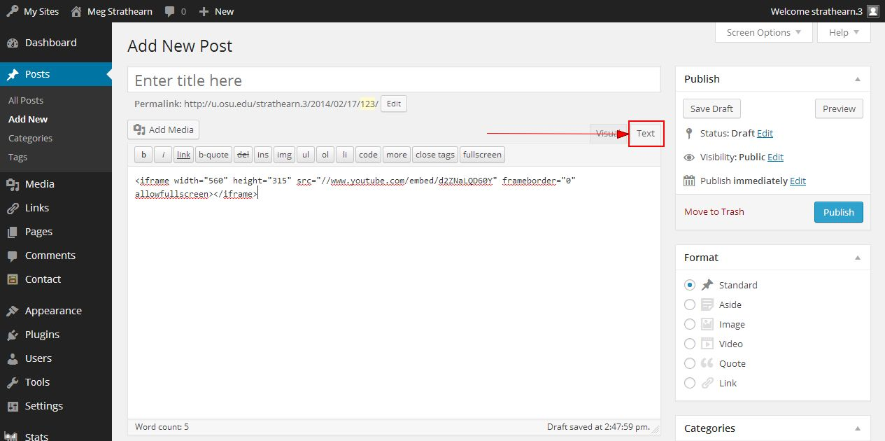 Text tab on content editor with iframe code pasted into editor on Add New Post page